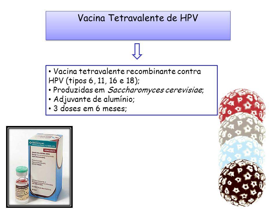 Vacina Tetravalente de HPV Vacina tetravalente recombinante contra HPV (tipos 6, 11, 16 e 18); Produzidas em Saccharomyces cerevisiae; Adjuvante de al