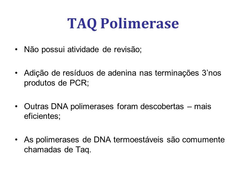 TAQ Polimerase Não possui atividade de revisão; Adição de resíduos de adenina nas terminações 3nos produtos de PCR; Outras DNA polimerases foram descobertas – mais eficientes; As polimerases de DNA termoestáveis são comumente chamadas de Taq.