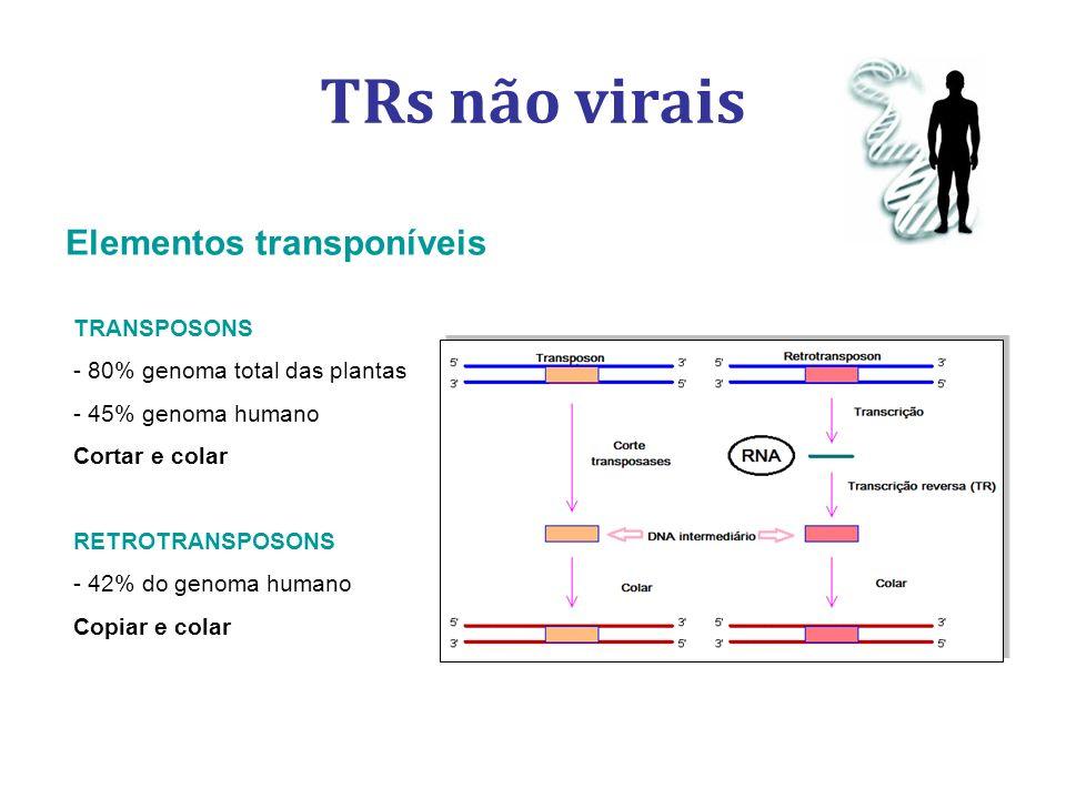 TRs não virais TRANSPOSONS - 80% genoma total das plantas - - 45% genoma humano Cortar e colar RETROTRANSPOSONS - 42% do genoma humano Copiar e colar Elementos transponíveis