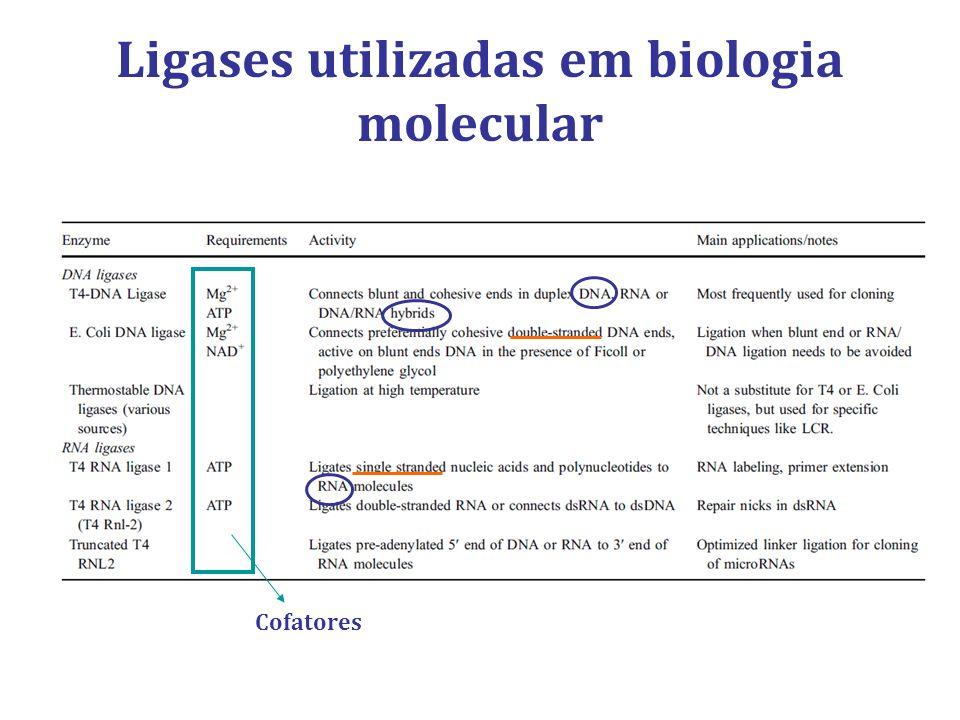Ligases utilizadas em biologia molecular Cofatores