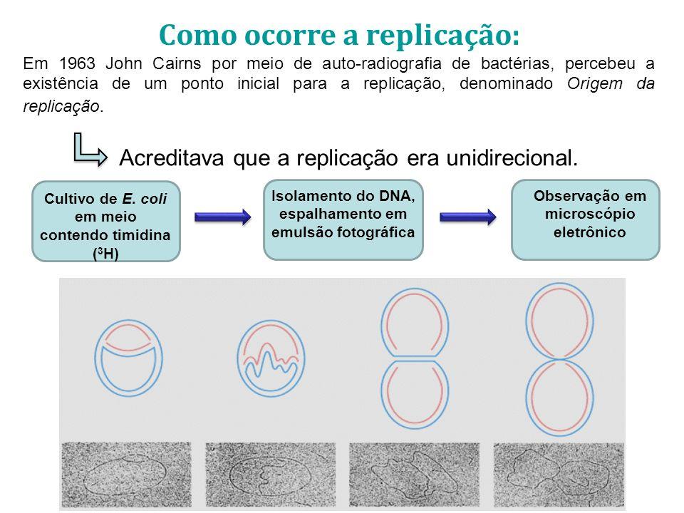 Como ocorre a replicação: Em 1963 John Cairns por meio de auto-radiografia de bactérias, percebeu a existência de um ponto inicial para a replicação, denominado Origem da replicação.