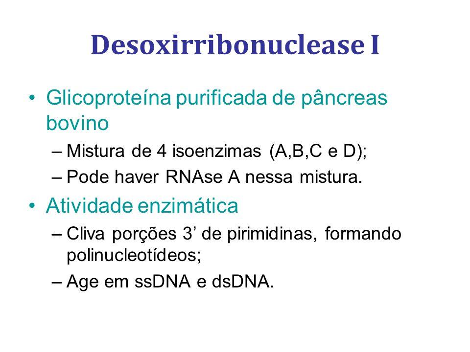 Glicoproteína purificada de pâncreas bovino –Mistura de 4 isoenzimas (A,B,C e D); –Pode haver RNAse A nessa mistura. Atividade enzimática –Cliva porçõ