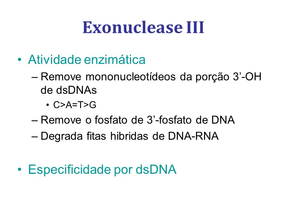Atividade enzimática –Remove mononucleotídeos da porção 3-OH de dsDNAs C>A=T>G –Remove o fosfato de 3-fosfato de DNA –Degrada fitas hibridas de DNA-RN