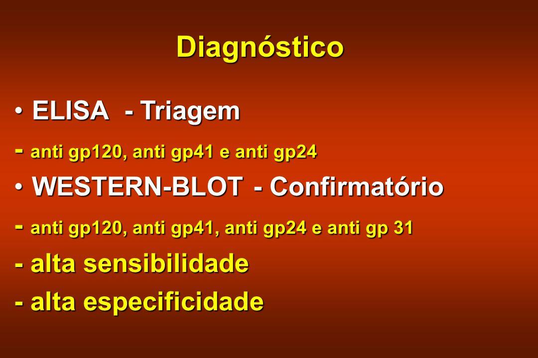 Diagnóstico ELISA - TriagemELISA - Triagem - anti gp120, anti gp41 e anti gp24 WESTERN-BLOT - ConfirmatórioWESTERN-BLOT - Confirmatório - anti gp120,