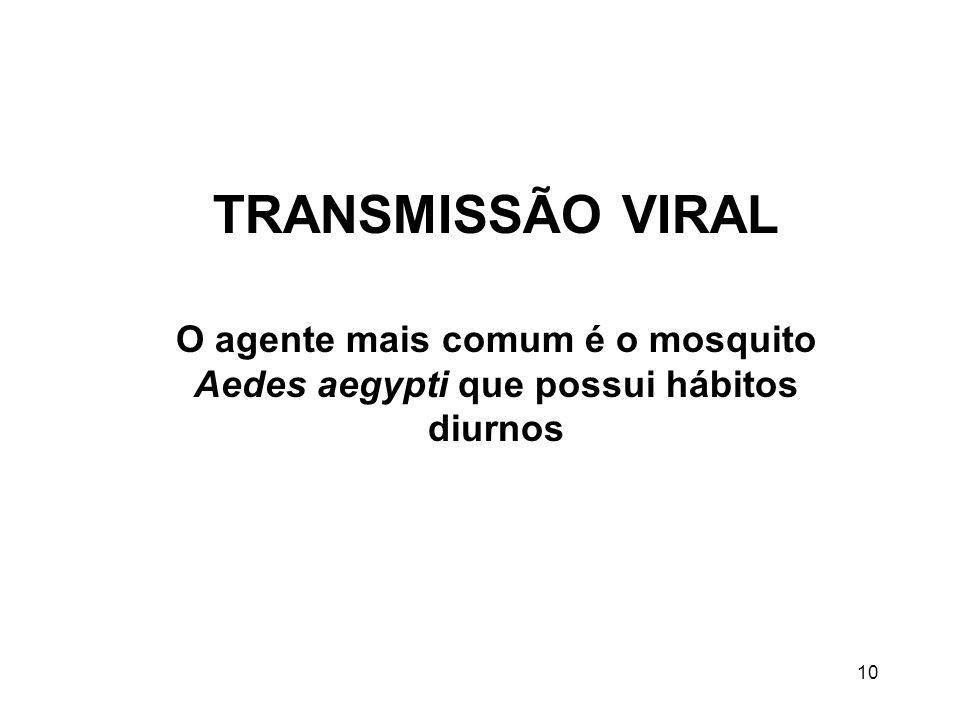 10 TRANSMISSÃO VIRAL O agente mais comum é o mosquito Aedes aegypti que possui hábitos diurnos