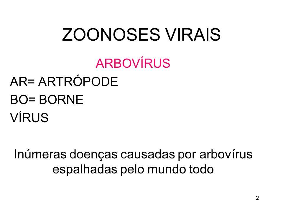 2 ZOONOSES VIRAIS ARBOVÍRUS AR= ARTRÓPODE BO= BORNE VÍRUS Inúmeras doenças causadas por arbovírus espalhadas pelo mundo todo