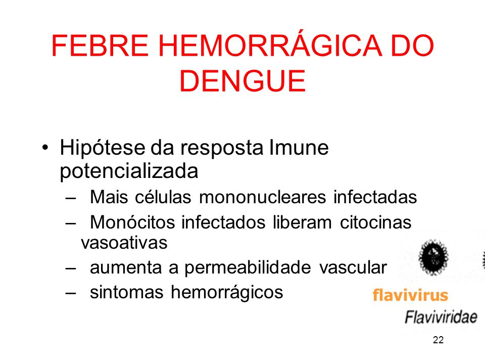 22 FEBRE HEMORRÁGICA DO DENGUE Hipótese da resposta Imune potencializada – Mais células mononucleares infectadas – Monócitos infectados liberam citoci
