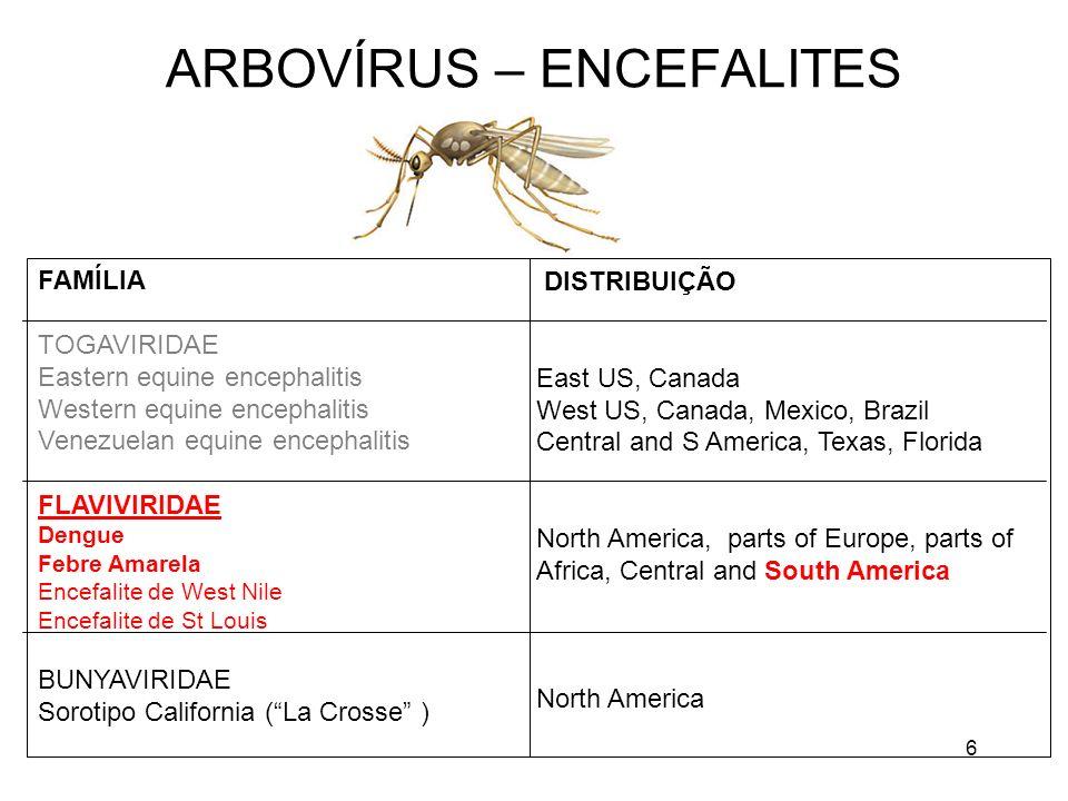 6 ARBOVÍRUS – ENCEFALITES DISTRIBUIÇÃO East US, Canada West US, Canada, Mexico, Brazil Central and S America, Texas, Florida North America, parts of E