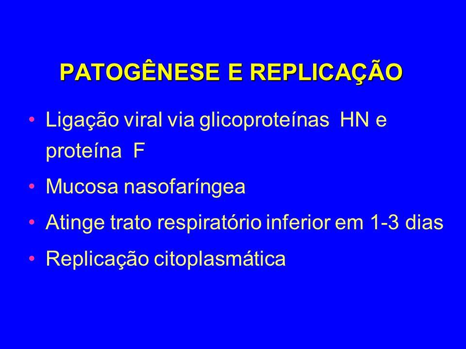 PATOGÊNESE E REPLICAÇÃO Ligação viral via glicoproteínas HN e proteína F Mucosa nasofaríngea Atinge trato respiratório inferior em 1-3 dias Replicação