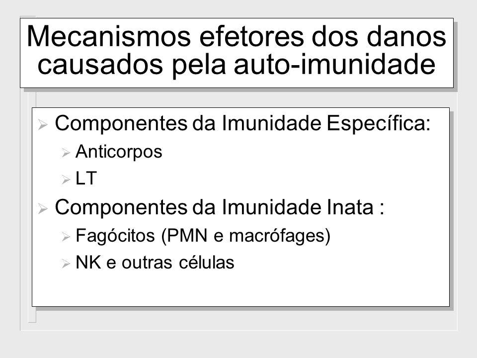 Mecanismos efetores dos danos causados pela auto-imunidade Componentes da Imunidade Específica: Anticorpos LT Componentes da Imunidade Inata : Fagócit