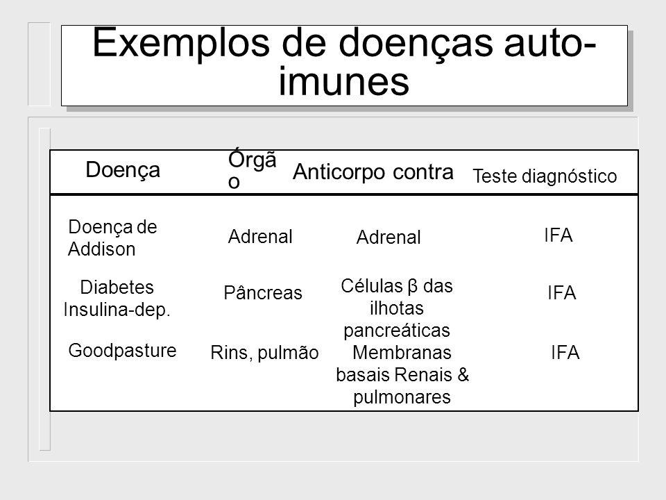 Doença Teste diagnóstico Órgã o Anticorpo contra Doença de Addison Adrenal IFA Diabetes Insulina-dep. PâncreasIFA Goodpasture Rins, pulmãoIFA Exemplos