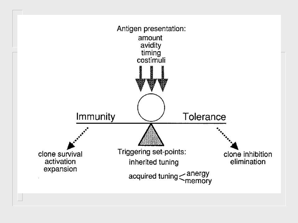 Tratamento das doenças auto-imunes Correção sintomática das conseqüências metabólicas Agentes imunosupressores convencionais Tratamentos experimentais: Indução da tolerância por administração oral do antígeno Imunização com o receptor específico do antígeno (imunização antiidiotípica) Correção sintomática das conseqüências metabólicas Agentes imunosupressores convencionais Tratamentos experimentais: Indução da tolerância por administração oral do antígeno Imunização com o receptor específico do antígeno (imunização antiidiotípica)