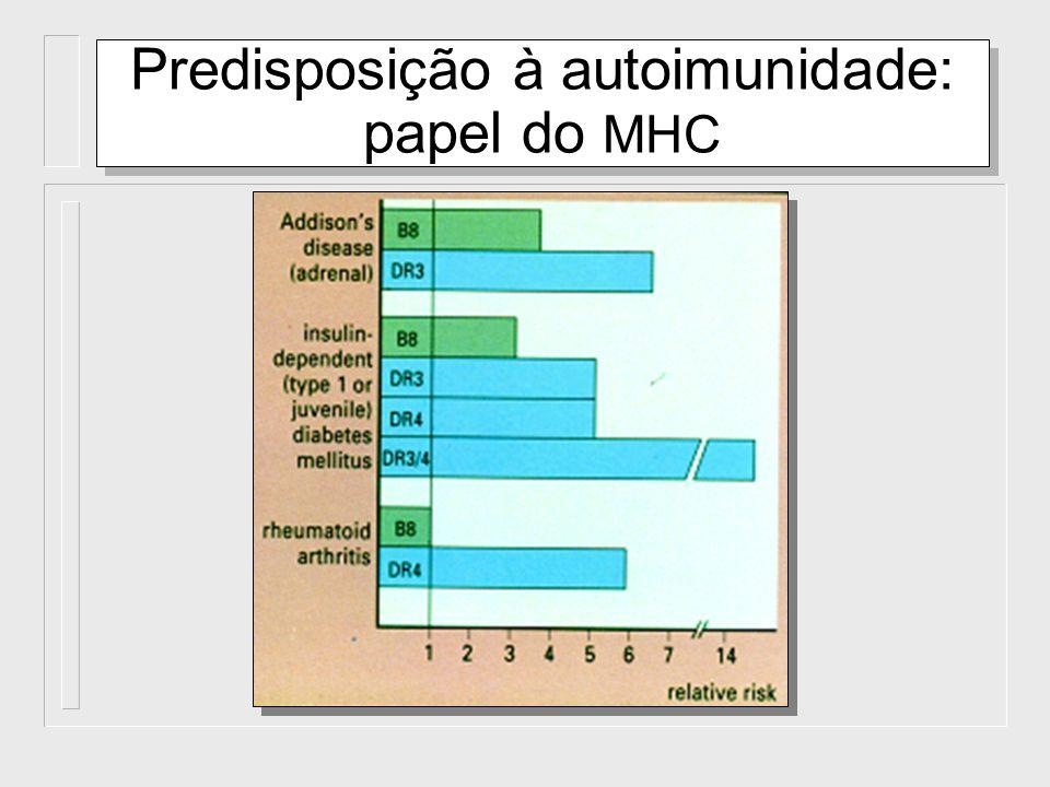 Mecanismos efetores dos danos causados pela auto-imunidade Componentes da Imunidade Específica: Anticorpos LT Componentes da Imunidade Inata : Fagócitos (PMN e macrófages) NK e outras células Componentes da Imunidade Específica: Anticorpos LT Componentes da Imunidade Inata : Fagócitos (PMN e macrófages) NK e outras células