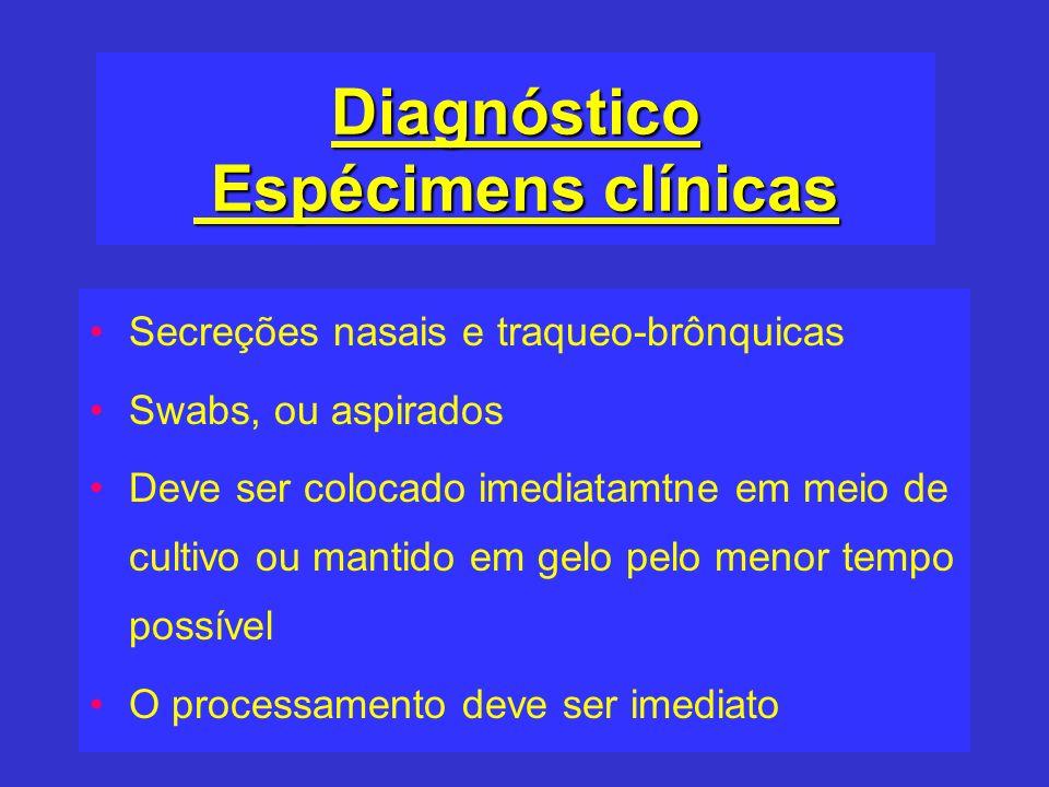 Diagnóstico Espécimens clínicas Secreções nasais e traqueo-brônquicas Swabs, ou aspirados Deve ser colocado imediatamtne em meio de cultivo ou mantido