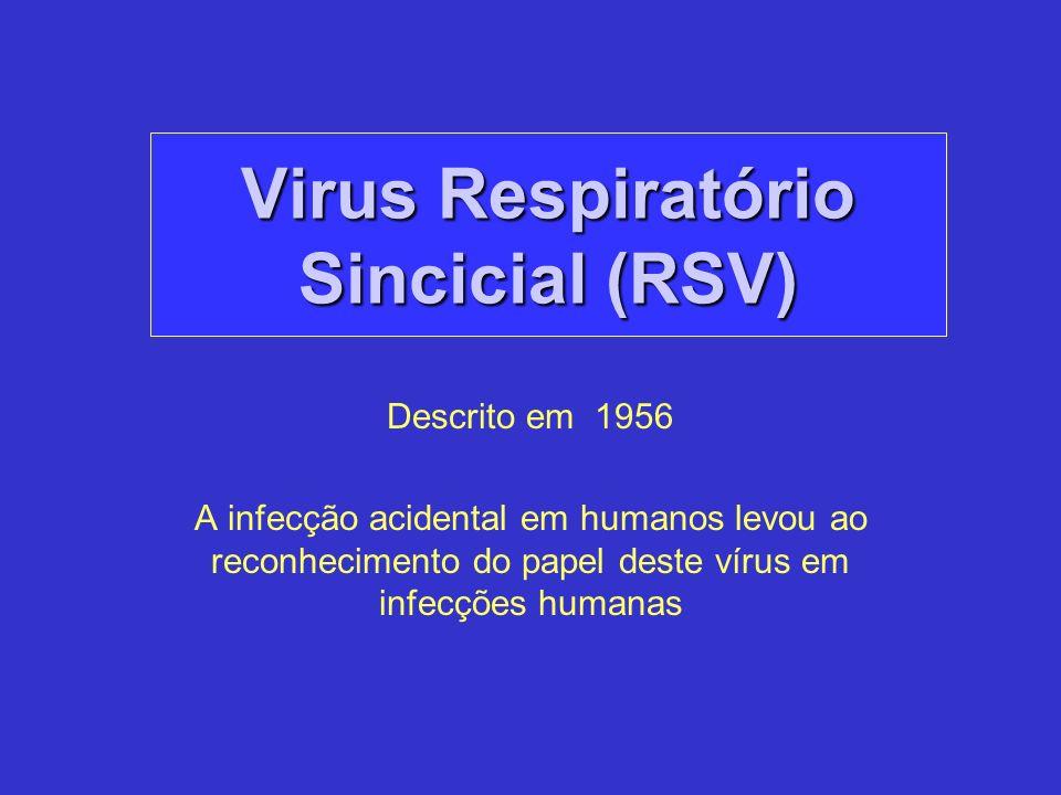Descrito em 1956 A infecção acidental em humanos levou ao reconhecimento do papel deste vírus em infecções humanas