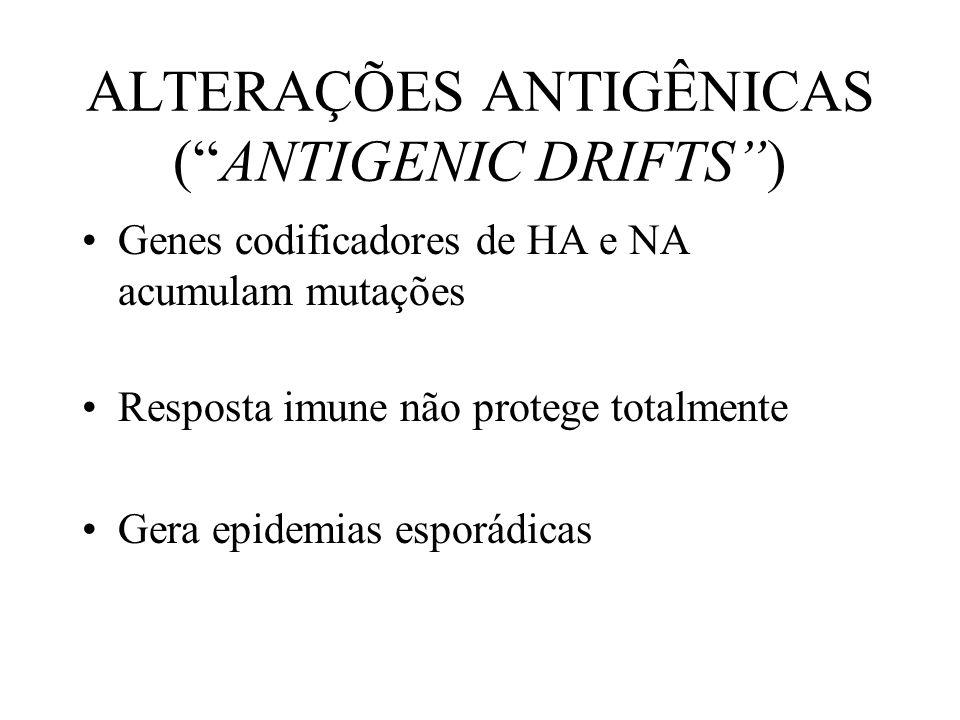 ALTERAÇÕES ANTIGÊNICAS (ANTIGENIC DRIFTS) Genes codificadores de HA e NA acumulam mutações Resposta imune não protege totalmente Gera epidemias esporá
