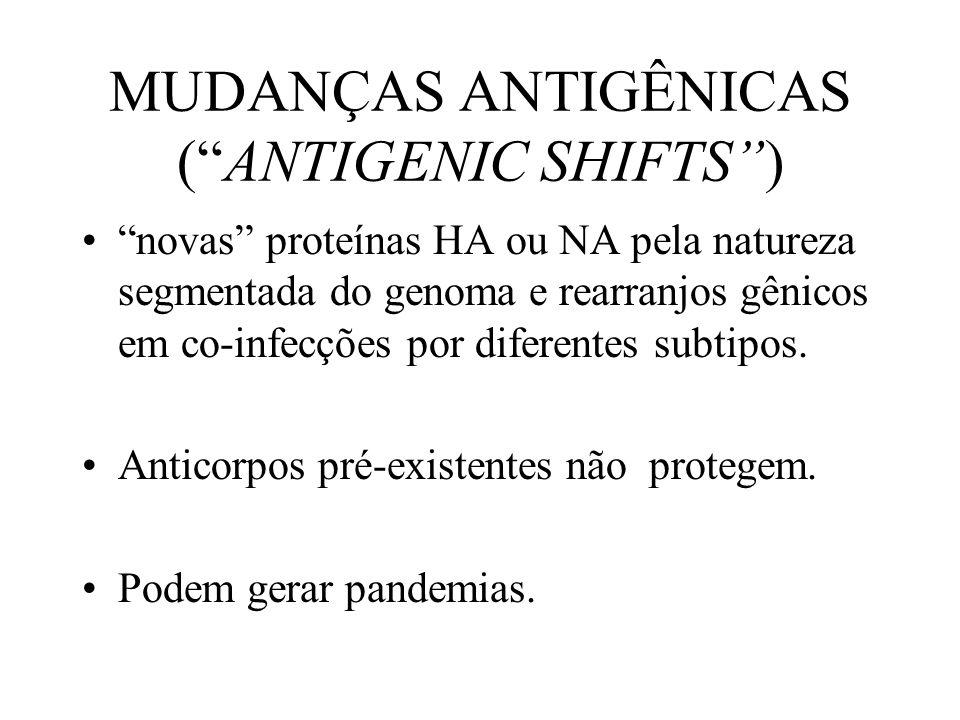 MUDANÇAS ANTIGÊNICAS (ANTIGENIC SHIFTS) novas proteínas HA ou NA pela natureza segmentada do genoma e rearranjos gênicos em co-infecções por diferente