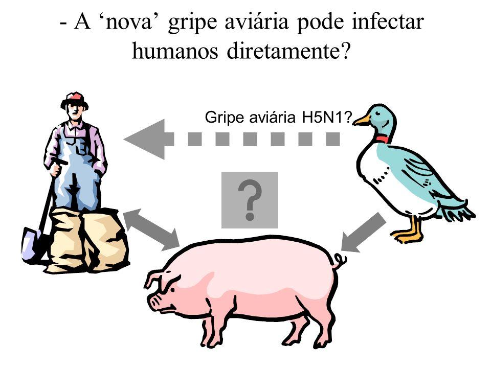 - A nova gripe aviária pode infectar humanos diretamente? Gripe aviária H5N1?