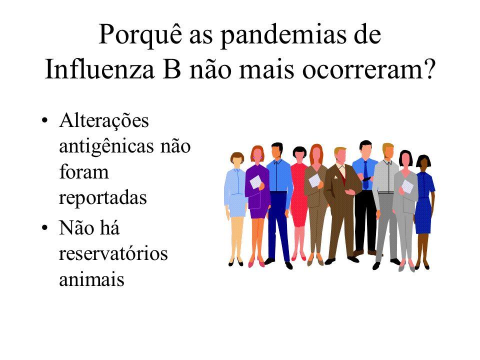 Porquê as pandemias de Influenza B não mais ocorreram? Alterações antigênicas não foram reportadas Não há reservatórios animais