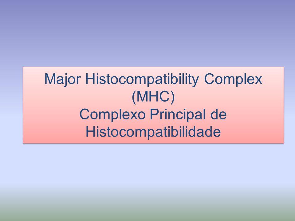 HLA - Human Leukocyte Antigens H2- Complexo de Histocompatibilidade de camundongos Importância: Transplante de órgãos; Resposta Imune; Predisposição à doenças.