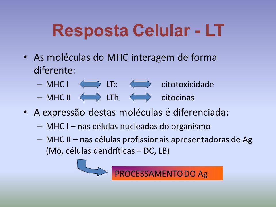 Resposta Celular - LT As moléculas do MHC interagem de forma diferente: – MHC ILTccitotoxicidade – MHC IILThcitocinas A expressão destas moléculas é d