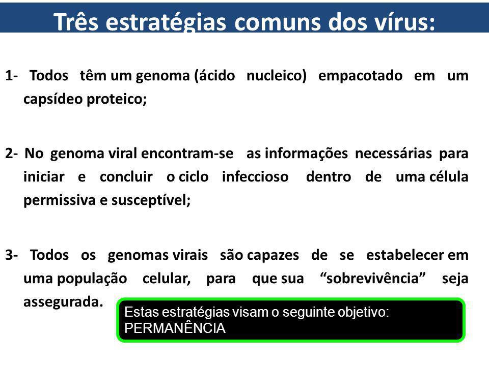 Três estratégias comuns dos vírus: 1- Todos têm um genoma (ácido nucleico) empacotado em um capsídeo proteico; 2- No genoma viral encontram-se as info