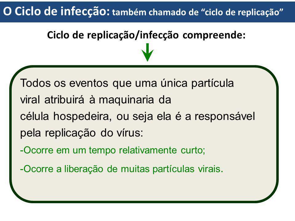 O Ciclo de infecção: também chamado de ciclo de replicação Ciclo de replicação/infecção compreende: Todos os eventos que uma única partícula viral atr