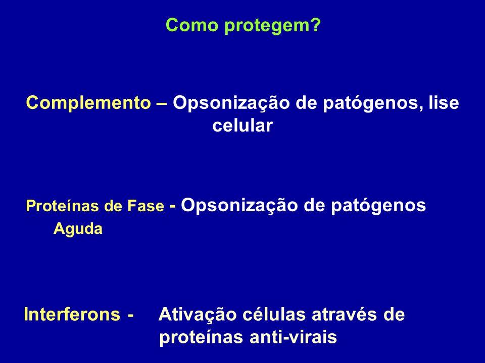 Como protegem? Complemento – Opsonização de patógenos, lise celular Proteínas de Fase - Opsonização de patógenos Aguda Interferons - Ativação células