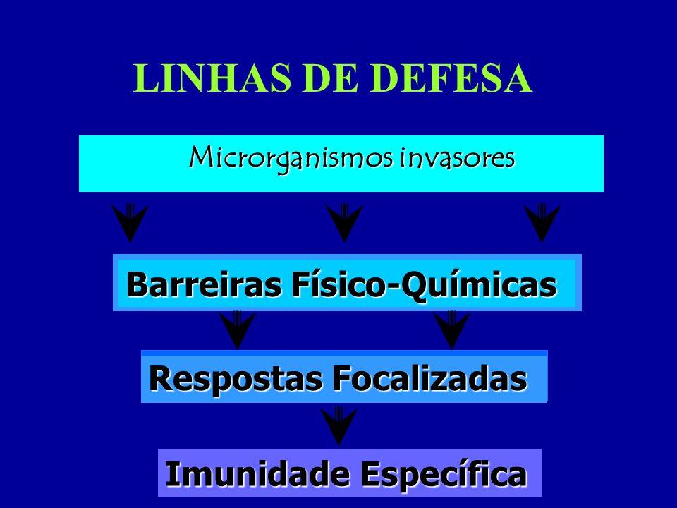 LINHAS DE DEFESA Microrganismos invasores Barreiras Físico-Químicas Respostas Focalizadas Imunidade Específica