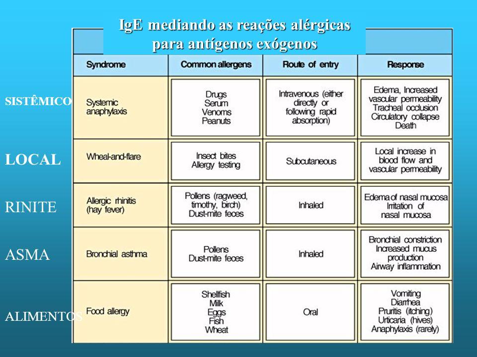 IgE mediando as reações alérgicas para antígenos exógenos LOCAL SISTÊMICO RINITE ASMA ALIMENTOS