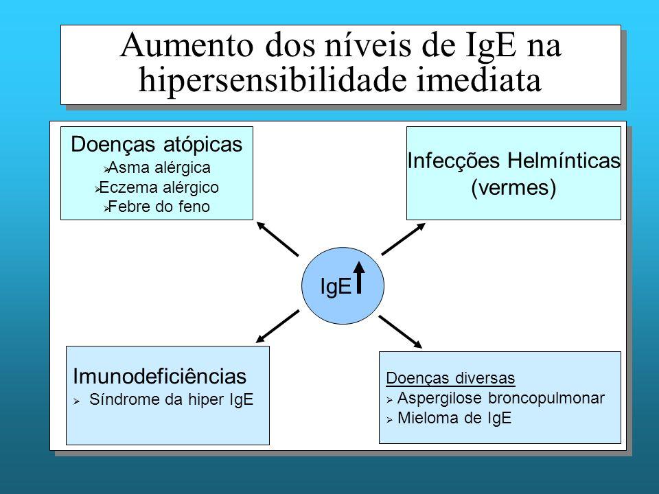 Aumento dos níveis de IgE na hipersensibilidade imediata IgE Infecções Helmínticas (vermes) Doenças atópicas Asma alérgica Eczema alérgico Febre do feno Doenças diversas Aspergilose broncopulmonar Mieloma de IgE Imunodeficiências Síndrome da hiper IgE