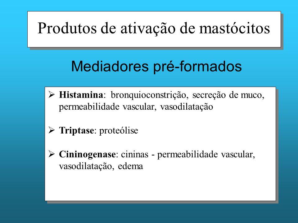 Produtos de ativação de mastócitos Histamina: bronquioconstrição, secreção de muco, permeabilidade vascular, vasodilatação Triptase: proteólise Cininogenase: cininas - permeabilidade vascular, vasodilatação, edema Histamina: bronquioconstrição, secreção de muco, permeabilidade vascular, vasodilatação Triptase: proteólise Cininogenase: cininas - permeabilidade vascular, vasodilatação, edema Mediadores pré-formados