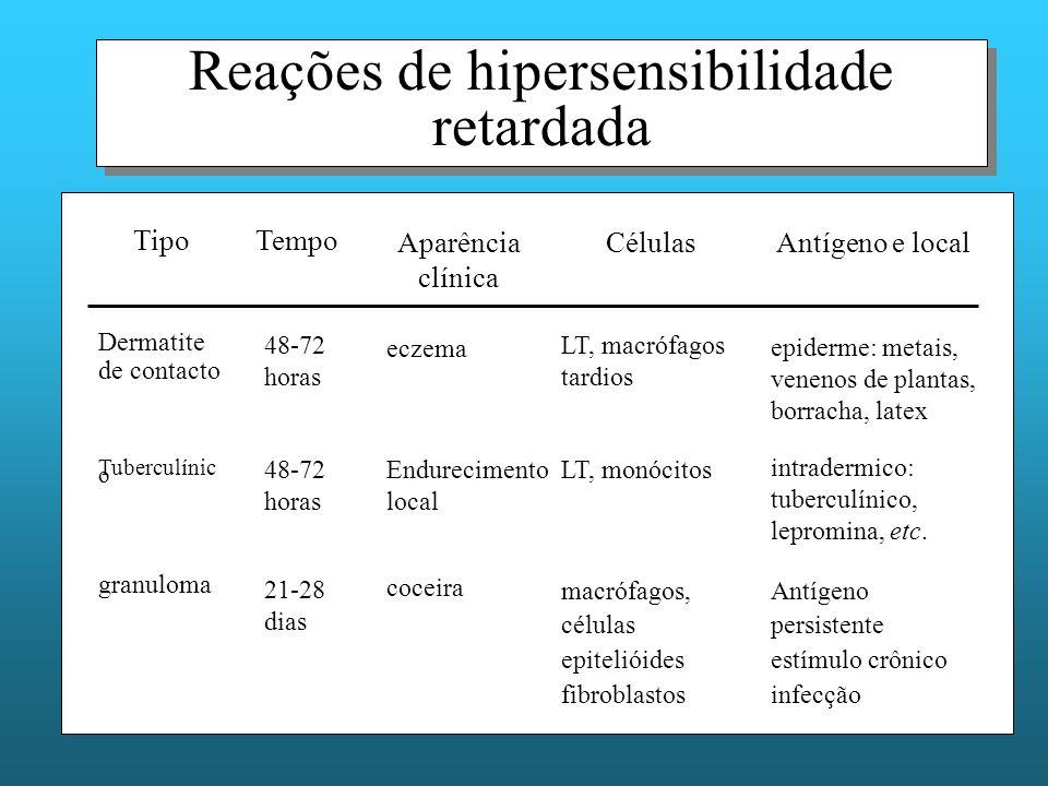 Reações de hipersensibilidade retardada Antígeno persistente estímulo crônico infecção macrófagos, células epitelióides fibroblastos coceira 21-28 dias granuloma intradermico: tuberculínico, lepromina, etc.