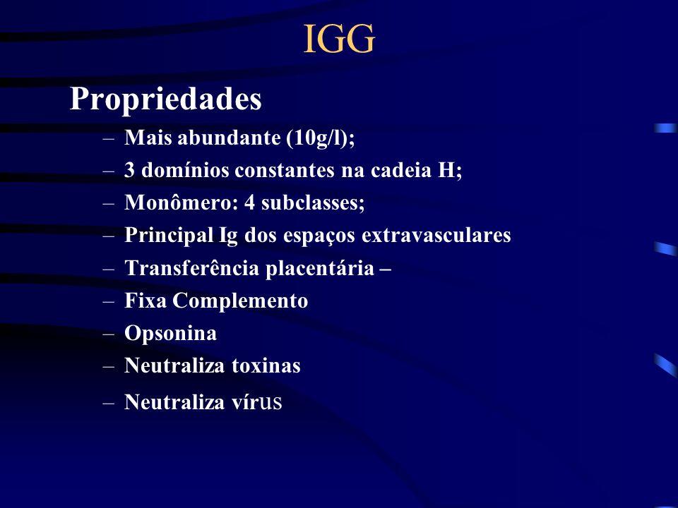 IGG Propriedades –Mais abundante (10g/l); –3 domínios constantes na cadeia H; –Monômero: 4 subclasses; –Principal Ig dos espaços extravasculares –Tran