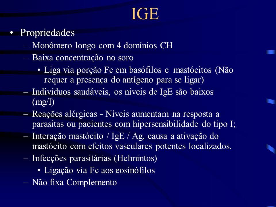 Propriedades –Monômero longo com 4 domínios CH –Baixa concentração no soro Liga via porção Fc em basófilos e mastócitos (Não requer a presença do antí