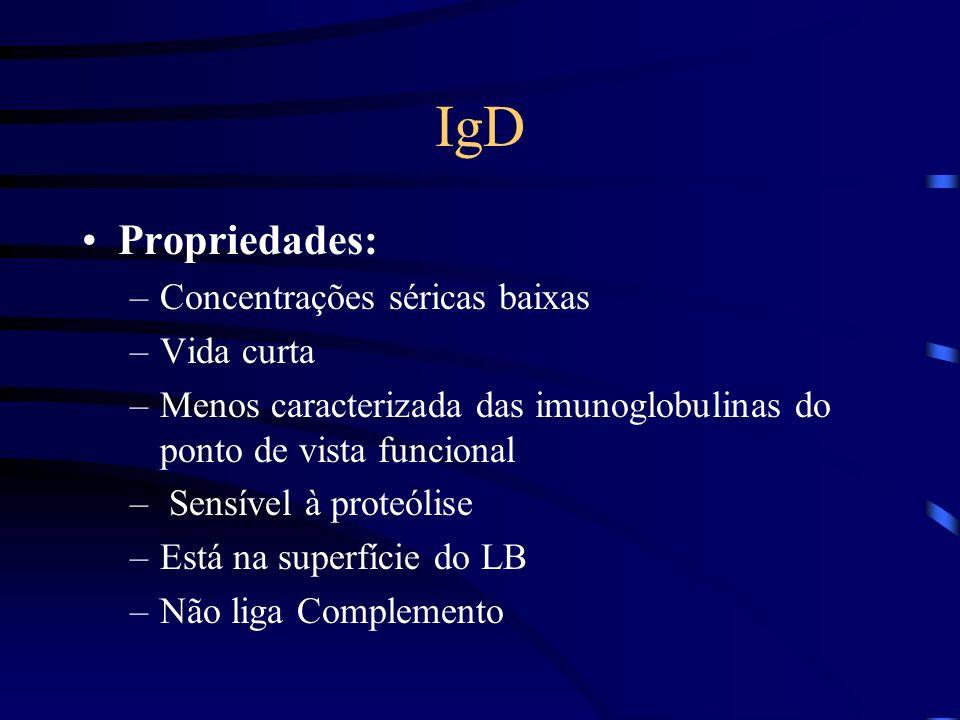 Propriedades: –Concentrações séricas baixas –Vida curta –Menos caracterizada das imunoglobulinas do ponto de vista funcional – Sensível à proteólise –