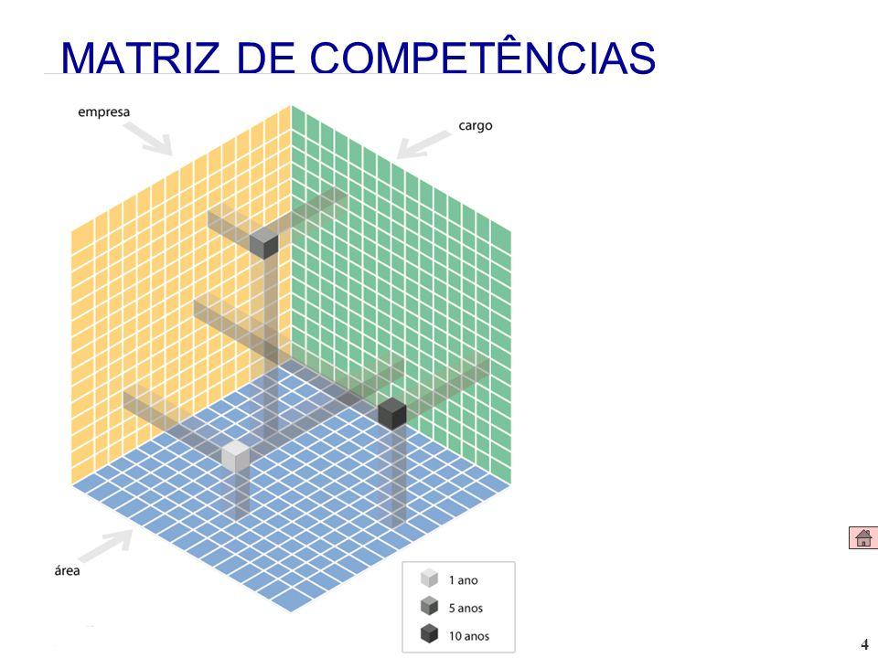 4 MATRIZ DE COMPETÊNCIAS