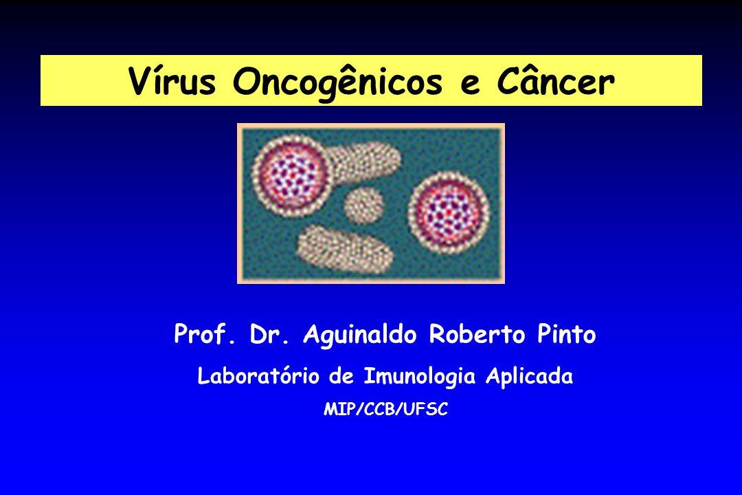 Prof. Dr. Aguinaldo Roberto Pinto Laboratório de Imunologia Aplicada MIP/CCB/UFSC Vírus Oncogênicos e Câncer