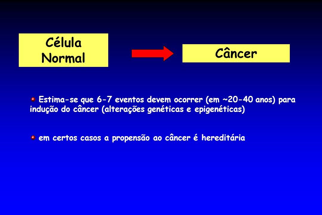 Célula Normal Câncer Estima-se que 6-7 eventos devem ocorrer (em ~20-40 anos) para indução do câncer (alterações genéticas e epigenéticas) em certos c