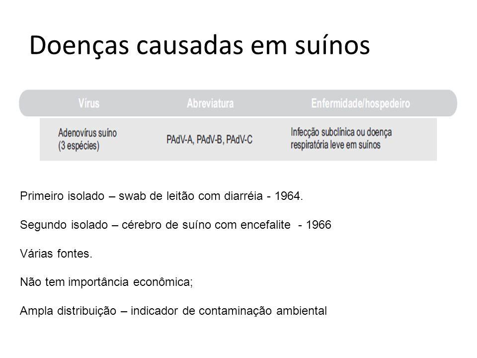 Doenças causadas em suínos Primeiro isolado – swab de leitão com diarréia - 1964. Segundo isolado – cérebro de suíno com encefalite - 1966 Várias font