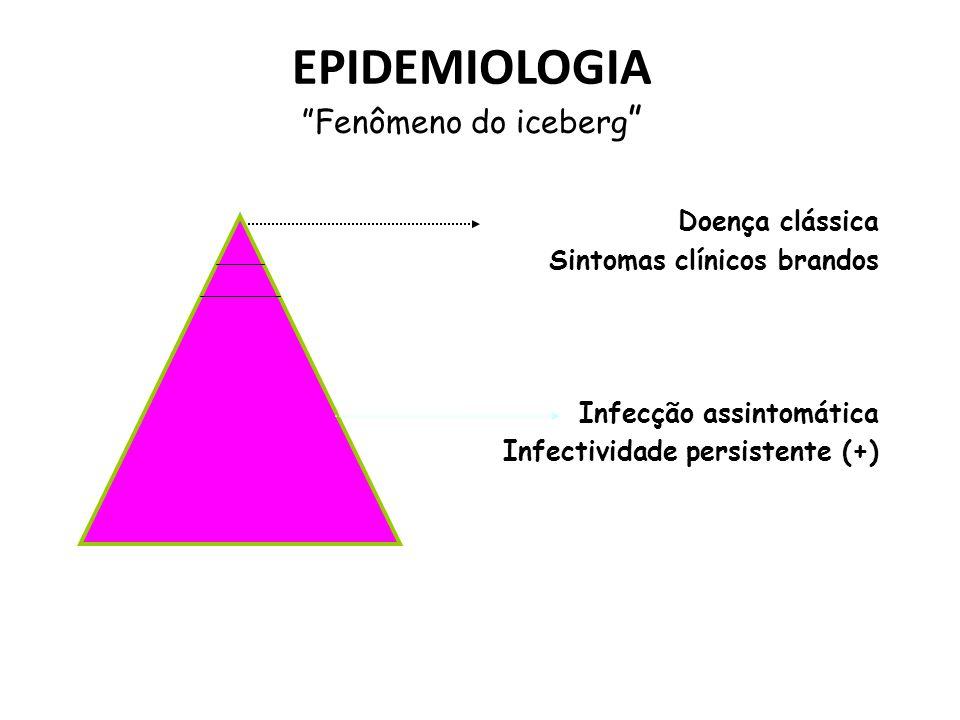 EPIDEMIOLOGIA Fenômeno do iceberg Doença clássica Sintomas clínicos brandos Infecção assintomática Infectividade persistente (+)