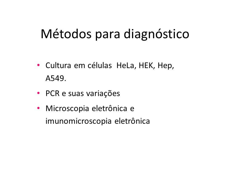 Métodos para diagnóstico Cultura em células HeLa, HEK, Hep, A549. PCR e suas variações Microscopia eletrônica e imunomicroscopia eletrônica
