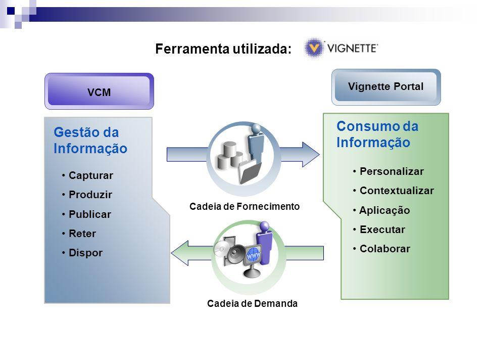 Ferramenta utilizada: Consumo da Informação Personalizar Contextualizar Aplicação Executar Colaborar Cadeia de Demanda Gestão da Informação Capturar P