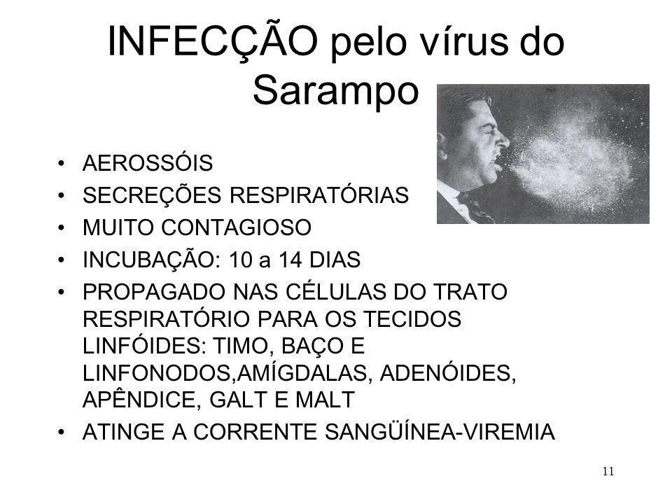 11 INFECÇÃO pelo vírus do Sarampo AEROSSÓIS SECREÇÕES RESPIRATÓRIAS MUITO CONTAGIOSO INCUBAÇÃO: 10 a 14 DIAS PROPAGADO NAS CÉLULAS DO TRATO RESPIRATÓR