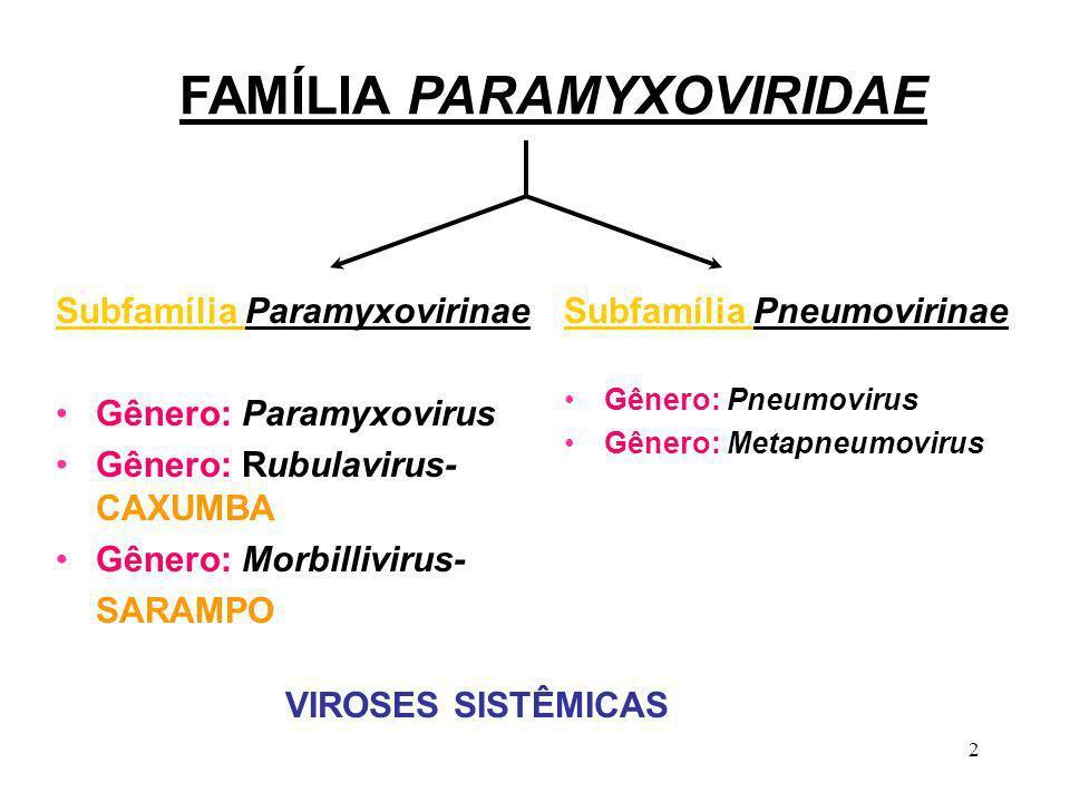 2 FAMÍLIA PARAMYXOVIRIDAE Subfamília Paramyxovirinae Gênero: Paramyxovirus Gênero: Rubulavirus- CAXUMBA Gênero: Morbillivirus- SARAMPO Subfamília Pneu