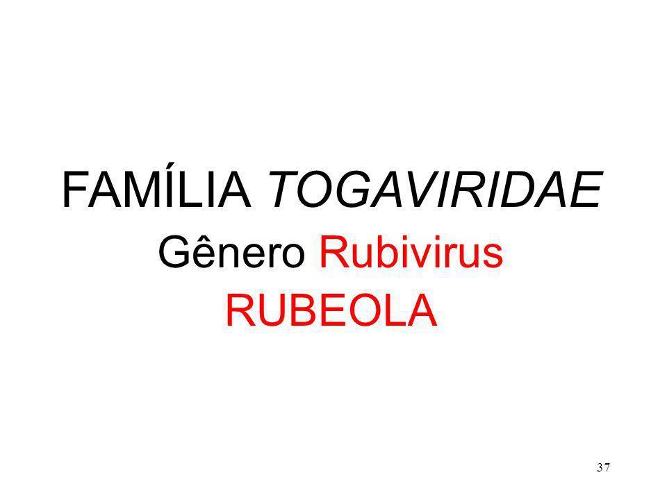 37 FAMÍLIA TOGAVIRIDAE Gênero Rubivirus RUBEOLA