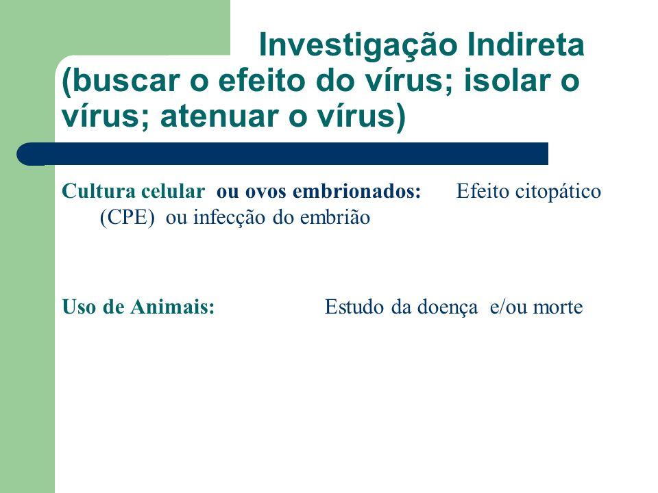 Investigação Indireta (buscar o efeito do vírus; isolar o vírus; atenuar o vírus) Cultura celular ou ovos embrionados: Efeito citopático (CPE) ou infe