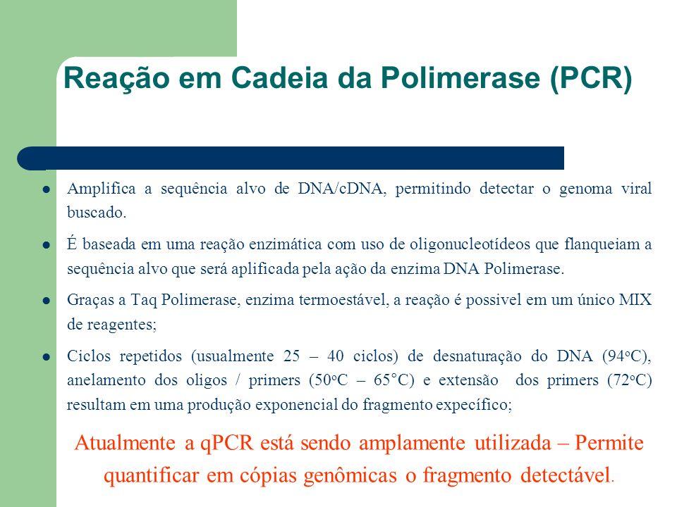 Reação em Cadeia da Polimerase (PCR) Amplifica a sequência alvo de DNA/cDNA, permitindo detectar o genoma viral buscado. É baseada em uma reação enzim