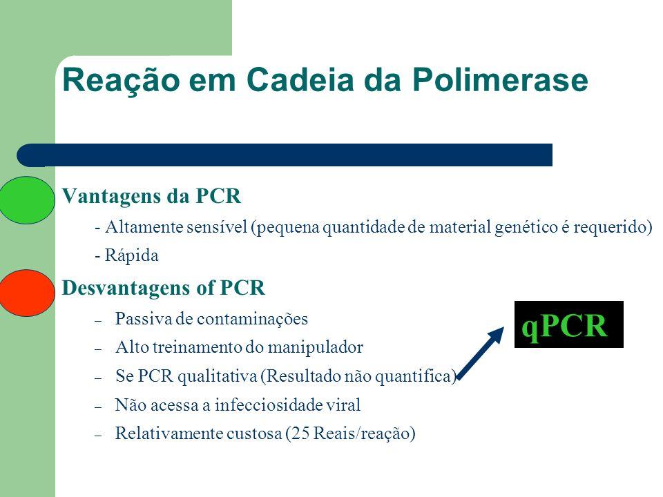 Reação em Cadeia da Polimerase Vantagens da PCR - Altamente sensível (pequena quantidade de material genético é requerido) - Rápida Desvantagens of PC