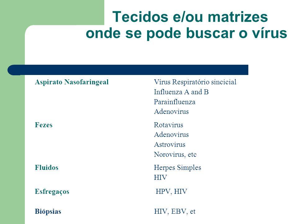 Tecidos e/ou matrizes onde se pode buscar o vírus Aspirato NasofaringealVírus Respiratório sincicial Influenza A and B Parainfluenza Adenovirus FezesR